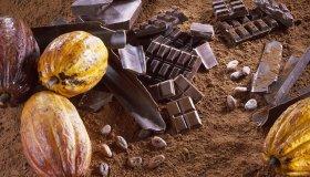 Какао подорожал до 10-месячного максимума