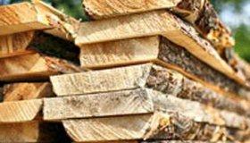 Тверская область делает упор на отрасль деревообработки