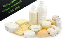 Молочный бизнес: как заработать на продаже молока